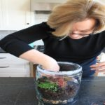 What Are The Benefits Of Terrarium Making In Terrarium Workshop Singapore?
