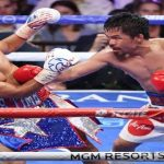 The Qualities of an Excellent Boxer